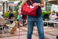rosas-cafe-marbella033_FT_PIL0638