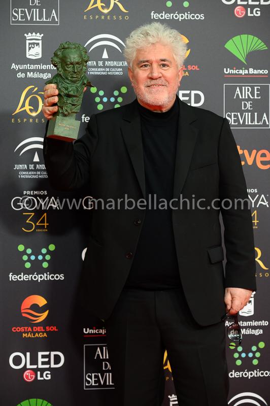 premios goya 2020 malaga