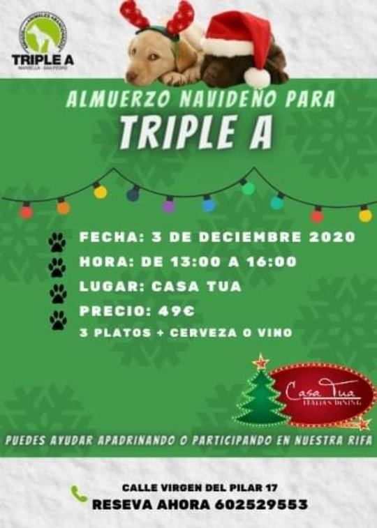CasaTua Marbella Triple A