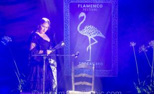 trocadero flamenco festival estrella morente