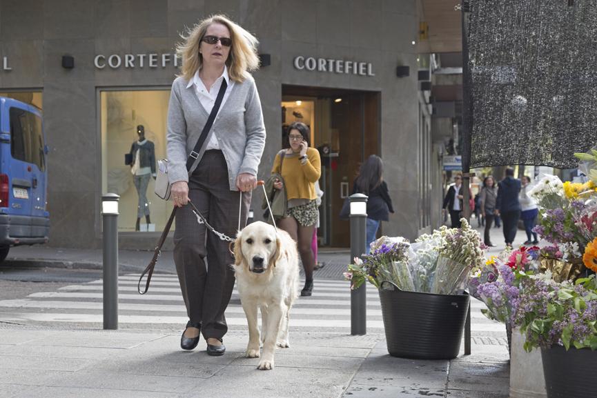 """Concurso """"Ponle nombre a un perro guía"""""""